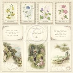 Pion Design invites you on a flourishing journey in the footsteps of Carl Linnaeus, the Swedish botanist famous for collecting and identifying plants and flowers particulary in the north of Sweden. The paper collection Linnaeus Botanical Journal is inspired by notes and drawings made by Linnaeus in…