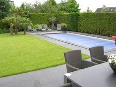 Villa met tuin in mediterrane sferen met palmbomen en zwembad. Aangelegd door Hoveniersbedrijf Hanewinkel, TuinKeur gecertificeerd.