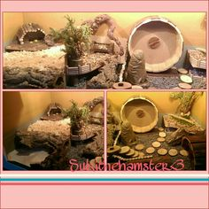 Another layout I did for my little girl Suki ❤..