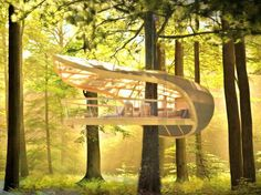 We are in love with this tree house