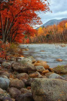 (via 500px / Autumn Riverside by Vincent James)