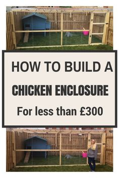 How to build a chicken enclosure for less than £300