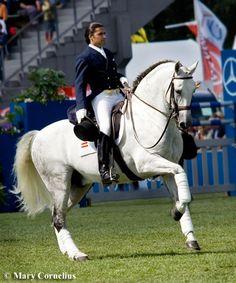 Beautiful horse, beautiful man.