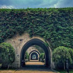 Photo: Old city wall of #Nanjing #China