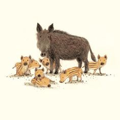 Wild Boar and piglets by briony may smith