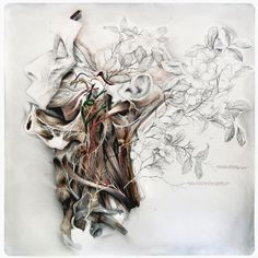 Anatomical Art Explores The Relationship Between Man And Nature http://designwrld.com/nunzio-pacis-anatomical-art/