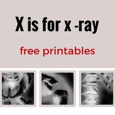 X is for x - ray free printables including images and worksheets for the human body and animal x-ray worksheets.