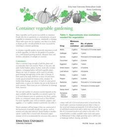 Vegetables - Container Vegetable Gardening