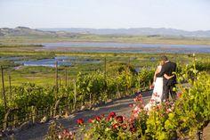 Wedding, Viansa winery
