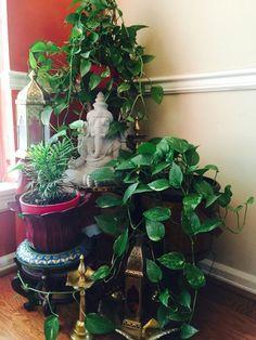 Ideas For Apartment Balcony Garden Zen Plants Ethnic Home Decor, Asian Home Decor, Boho Decor, Diy Home Decor, Home Decoration, Decorations, Apartment Balcony Garden, Apartment Balconies, Apartment Plants