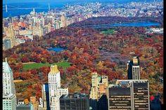 New York City (Where I'm From) (Bronx Chick)