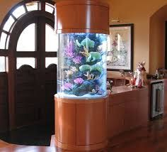 52 Modern Aquarium Partition Ideas For Living Room. Home furniture has become more modern and completely advanced nowadays, that you can have electric, automatic fireplaces, modern wall fountains, bed. Aquarium Design, Wall Aquarium, Nature Aquarium, Aquascaping, Living Room Flooring, Living Room Interior, Aqua Farm, Home Design Images, Simple House Design