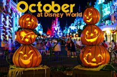 October at Disney World is starting to cool down from summer temps, has fairly light crowds (except for Columbus Day weekend), a couple of great events and often has Free Dining as a promotion. Some tips for traveling in October: Although most people think low crowds = less planning, 1 thing...