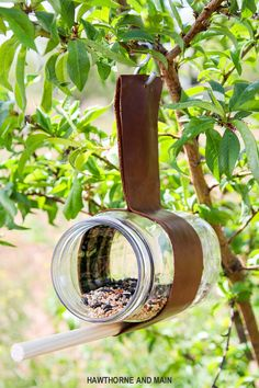Check out this easy DIY Bird Feeder. What a fun way to get the kids outside and excited about seeing birds and only requires a few supplies. This one looks like a great project!
