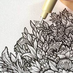 Video drawing#1 #wip #nature