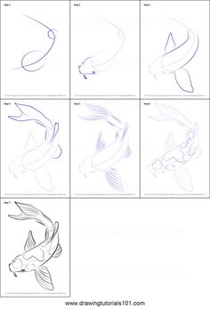 How to Draw a Koi Fish Printable Drawing. How to Draw a Koi Fish Printable Drawing Sheet by Koi Fish Drawing, Fish Drawings, Animal Drawings, Pencil Drawings, Art Drawings, Drawing Animals, Landscape Drawings, Drawing Lessons, Drawing Tips