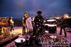 The Roots by Rob Shanahan