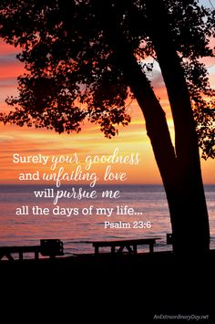 Surely your goodness
