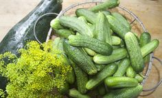 Opskrift på syltede agurker Preserves, Cucumber, Dinners, Vegetables, Recipes, Food, Dinner Parties, Preserve, Food Dinners