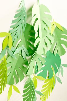DIY leaf backdrop. | Pop up kemut