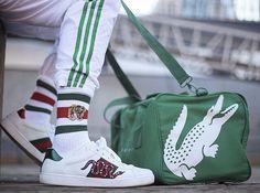 Lacoste x Gucci x Adidas