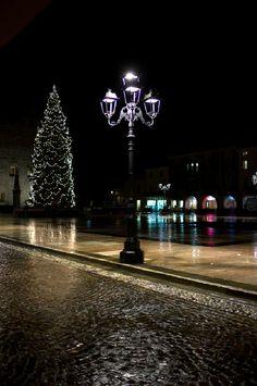 lamp post and Christmas tree
