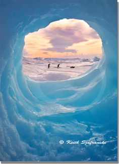 ANTARCTIC PICTURE FRAME - Emperor Penguins and Iceberg on the ice around Antarctica