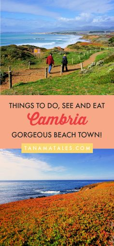 Cambria, California: Things to Do, See and Eat - Tanama Tales Cambria California, California Coast, California Travel, San Simeon California, California Living, Central California, Northern California, Usa Travel Guide, Travel Usa