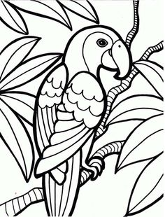 Parrot Printable Coloring Pages Back Print This Parrot Color