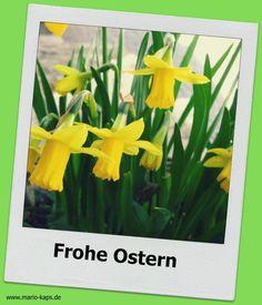 Frohe Ostern 2015 - Mario´s Fire Food & Fine Food Impressum: http://www.mario-kaps.de/impressum/