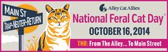 National Feral Cat Day! Oct 16th! Please help!!