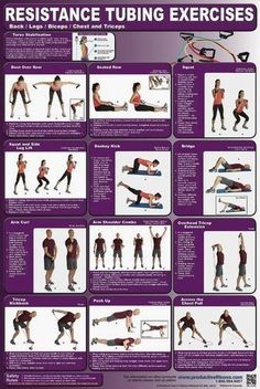 Workout Exercise resistance bands back/leg/biceps/chest/triceps Biceps, Stretch Band, Kettlebell Training, Kettlebell Circuit, Kettlebell Benefits, Kettlebell Challenge, Workout Posters, Chest Muscles, Resistance Band Exercises