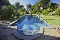 Elegant in-ground pool in large grass yard surrounded by trees