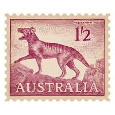 Iconic Australian postage stamp re-drawn in crayon. Available in 4 sizes. Australian Gifts, Australian Animals, Australian Icons, Rare Stamps, Vintage Stamps, Nearly Extinct Animals, Reptiles, Mammals, Postage Stamp Design