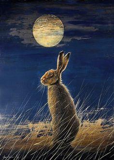 Full moon hare