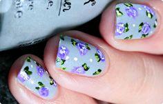 Malý koutek krásy: Fialové růže