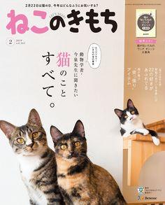 >雑誌『ねこのきもち』 Pet Pet, Dog Cat, Product Branding, Pose, Logo Design, Graphic Design, Book Cover Design, Pet Shop, Rainbow
