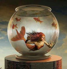#mermaids
