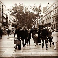 #barcelona #valeriasbarcelona #valeriasbikeaccessoriescom #lasramblasbcn #bromptonlifestyle #trigogear #trigoforbrompton #etidecrank #hubsmith #monkiicage #monkiiclip #josephkuosac