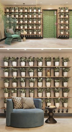 Wall Decor Idea – Create A Grid Of Identical Planters For A Contemporary Look