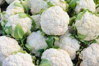 6 Reasons Cauliflower is the New Superfood - NewBeauty Cauliflower Cheese Soups, Cauliflower Fried Rice, Cauliflower Recipes, Superfood, Health Benefits Of Cauliflower, High Protein Vegetables, Veggies, Diabetes, Coconut Pancakes