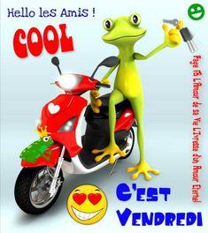 Hello les amis! Cool, C'est Vendredi #vendredi grenouille mobilette scooter cest vendredi bon vendredi humour