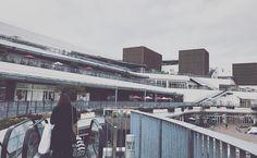 Terrace mall Syonan - Tsujido Fujisawa iPhone7/Procamera/VSCO  #terracemall湘南 #tsujido #辻堂 #shonan #湘南 #japan #vsco #vscocam #instagramjapan #ig_japan #instadiary #iphonephotography #streetphotography #shotoniPhone #shotoniPhone7 #ink361_mobile #ink361_asia #reco_ig #igersjp #mwjp #team_jp_ #indies_gram #hueart_life #スマホ写真部 #写真好きな人と繋がりたい #写真撮ってる人と繋がりたい #東京カメラ部 #tokyocameraclub #iPhone越しの私の世界
