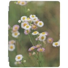 Pretty Daisy Fleabane iPad Smart Cover Technology Gifts, Diy Face Mask, Gifts For Dad, Daisy, Ipad, Cover, Pretty, Techie Gifts, Dad Gifts