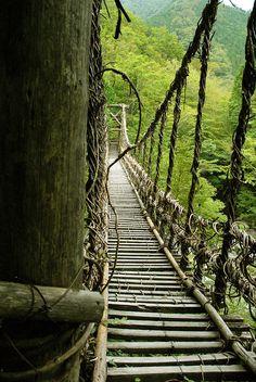 Kazura Bridge(vine bridge), Iya Valley, Miyoshi, Tokushima, Japan