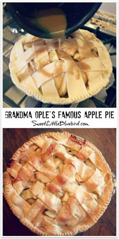 GRANDMA OPLE'S FAMOUS APPLE PIE- Awesome tried & true recipe with hundreds of rave reviews. The BEST apple pie ever! Simple to make too. New family favorite!   SweetLittleBluebird.com