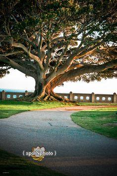 Point Fermin Park - San Pedro