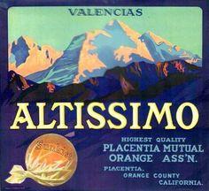 ALTISSIMO. Orange Label. Piacentia. Califfornia (USA)