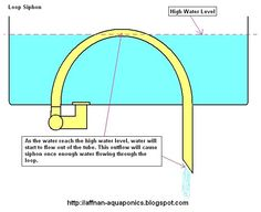 """Loop Siphon   This siphon evolve from the classic """"Loop Over The Barrel"""" siphon. Its made up of a flexible tube, with fittings to accomodate..."""
