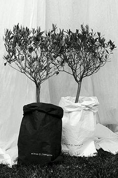 공기정화 화분 인테리어.2 식물인테리어 화분스탠드 화분커버 : 네이버 블로그